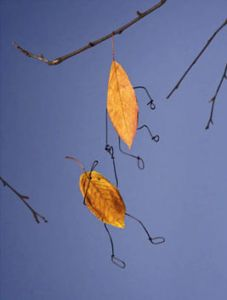 Falling Leaves by Terry Border