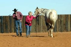 How to move your horse's hind-quarters with your body language and energy. Beginning stages before lunging.
