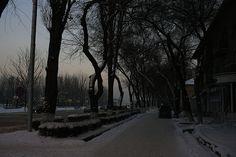 Bishkek Street 5