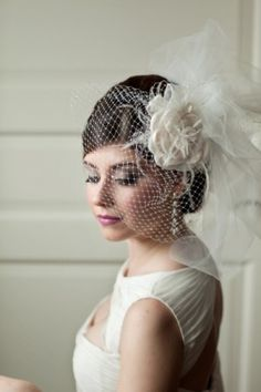 Still not sure what type of veil will match with my dress. I'm excited to try a birdcage like this.