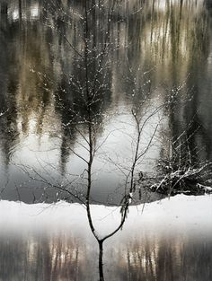Winter feel  By christian wery