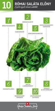 A római salátában sok A-, C-, B1-, B2-, B3- és B6-vitamin található, de magas a folsav, a króm és a mangán tartalma is. Sok K-vitamin van benne, mely erősíti és védi a csontokat, a kálium pedig a vérnyomás csökkentésében fontos. Nagyon sok rost, ám kevés kalória található benne, így hatékonyan támogatja a túlsúly leadását. Fokozza az epetermelést, ami javítja a koleszterin lebontását. Az egészség legyen veled! Lettuce, Quinoa, Herbs, Vegetables, Food, Vegetable Recipes, Eten, Herb, Veggie Food