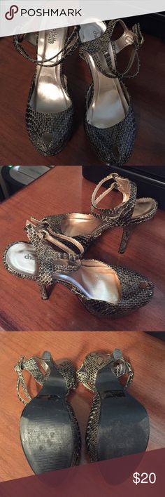 Charlotte Russe Snakeskin Heels Good condition Charlotte Russe Shoes Heels