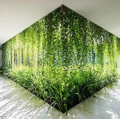 Lush Spa In Vietnam Is Like A Modern-Age Hanging