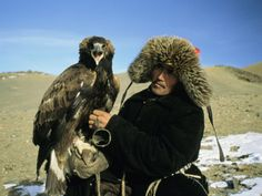 A Kazakh Eagle Hunter Poses with His Eagle on a Plain in Kazakhstan Sports Photographic Print - 41 x 30 cm Kazakhstan, Mongolia, Wild Birds, Eagles, Museum, Poses, Pure Products, Animals, Image