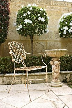 Inside a stone-walled garden, we find white azalea topiary trees set behind a low, boxwood hedge, rustic, metal chair and cherub pedestal bird bath all set on stone flagstones. A very sweet, intimate garden space. ~ B33Happy Honey