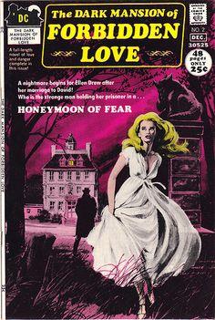 The Dark Mansion of Forbidden Love No. 2