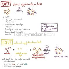 direct antibody Test Looks for the presence of IgG and/or complement on the RBCs. This causes hemolysis and can be due to an autoimmune disease, transfusion reaction, etc. Indirect antibody Test Th… Medical Laboratory Scientist, Medical Science, Medical Technology, Medical Coding, Technology Articles, Medical School, Technology News, Medical Lab Technician, Med Lab