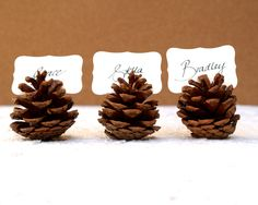 Woodland Wedding Place Cards, 20 Pine Cone holder Table Setting Rustic Country Theme Favor Autumn Fall Winter Christmas Brown Wood Masculine via Etsy Noel Christmas, Rustic Christmas, Winter Christmas, Christmas Crafts, Christmas Decorations, Christmas Place, Christmas Centerpieces, Cheap Thanksgiving Decorations, Christmas Labels