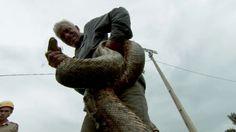 Jeremy Wade, River Monsters, Local Legends, Season 3, Shark, Sharks