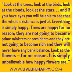 """""""Look at the trees, look at the birds, look at the clouds, look at the stars... and if you have eyes you will be able to see that the whole existence is joyful.  Everything is simply happy.  Trees are happy for no reason; they are not going to become prim by deeplifequotes, via Flickr❤️"""