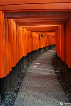 20 amazing things to do in Kyoto