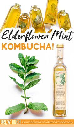 For a sweet, floral homemade kombucha flavor, you'll love this Elderflower Kombucha recipe! Add mint for a refreshing kick. #fermentation #mint #kombucha #elderflower #drink #beverage