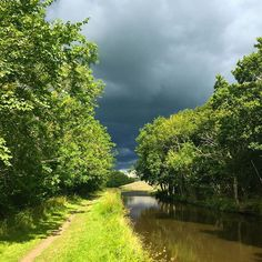 """Beautiful sunny day for a quick run with the dog and then an """"Oh my gosh who angered God"""" storm arrives overhead. #drenched #outsideisfree #cycling"""