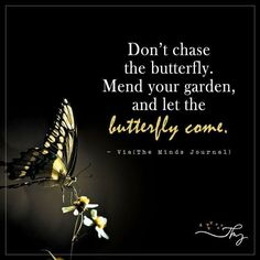 Quotes about wisdom : Dont chase the butterfly The Minds Journal Inspirational Thoughts, Positive Thoughts, Positive Quotes, Anais Nin, Wisdom Quotes, True Quotes, Butterfly Quotes, Best Memes, Wise Words