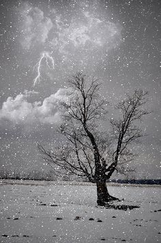Strike In The Snow - an unusual lightning and snow storm!
