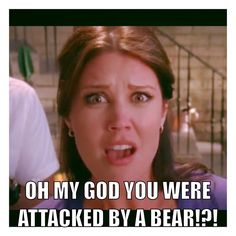 Oh my god you were attacked by a bear Ellie bartowski