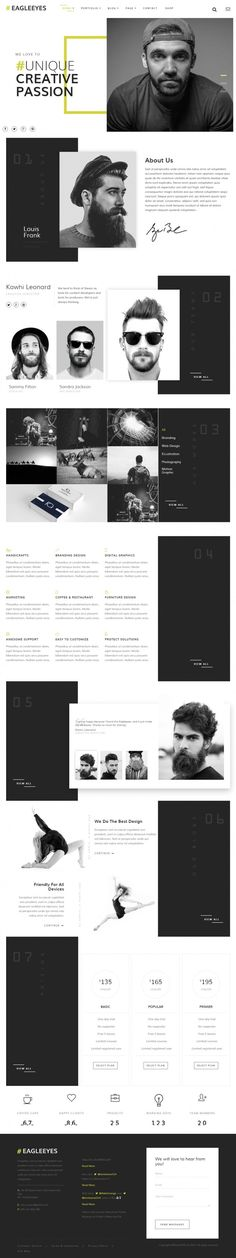 EAGLEEYES – Creative Multipages and One page in Web design