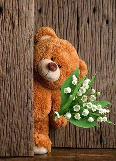 Cute Teddy Bear Pics, Diy Teddy Bear, Teddy Bear Images, Knitted Teddy Bear, Teddy Bear Pictures, Teddy Bear Baby Shower, Crochet Teddy, Crochet Bear, Cute Bears