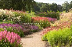 Lieuwe J. Zander » Gardens
