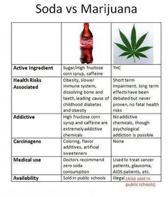 Which do you think is worse, soda or cannabis?