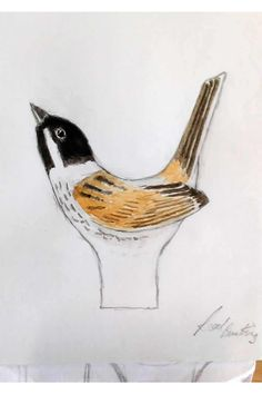 Steps from design sketch to finished carving of a reed bunting thumb stick - The sketch