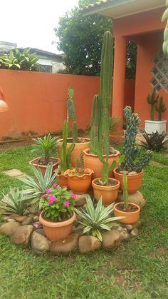 Front Yard Garden Design, Front Garden Landscape, Rock Garden Design, Garden Yard Ideas, Front Yard Landscaping, Lawn And Garden, Garden Deco, Diy Garden Projects, Succulents Garden