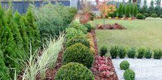 Garden Oasis, Home And Garden, Backyard Landscaping, Gardens, Landscape, Flowers, Plants, Modern, Backyard Landscape Design