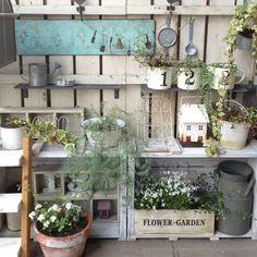yu_chanさんの、玄関/入り口,ワイヤープランツ,100均アイテム,ガーデン雑貨,グリーンネックレス,ヒナソウ,すのこ板壁,玄関ガーデン,いつもいいねやコメありがとうございます♡,アイビー(ヘデラ),フォローすごく嬉しいです♡,ミツデイワハナガサ,のお部屋写真