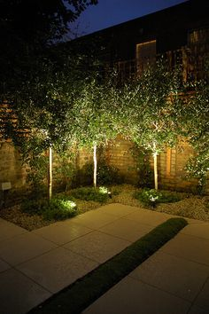Add the finishing touch to your exterior spaces with well-planned outdoor landscape lighting. Add the finishing touch to your exterior spaces with well-planned outdoor landscape lighting. Modern Landscaping, Outdoor Landscaping, Landscaping With Trees, Backyard Trees, Backyard Privacy, Landscape Architecture, Landscape Design, Modern Landscape Lighting, Privacy Fence Designs