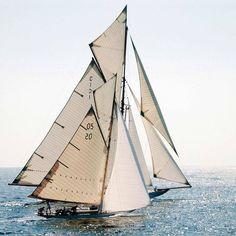""" Two Classic Beauties "" … Photographer: Philip Plisson … To windward is the 1911 William Fife III designed 19 metre ""Mariquita"" and to leeward is the 1911 Max Oertz designed 10 metre ""Pesa"""
