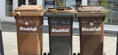 Biotonne: Was rein darf – und was nicht (Foto: Colourbox.de)