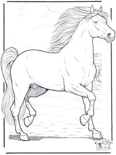 FunnyColoring.com / Animals coloring pages / <b>Horses</b> / <b>Horse</b> 3