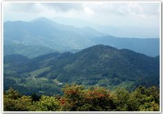 South of Damascus, Virginia, the Appalachian Trail follows segments of mountain ranges in the Cherokee National Forest, ascending to the high country of the North Carolina-Tennessee state line, and the highest mountains along the Trail—several above six thousand feet.