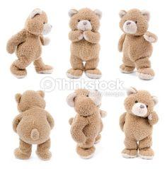 Stock Photo : teddy bear set