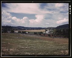 The countryside near the Tennessee Valley Authority dam site, Douglas Dam vicinity, Tenn. (LOC)