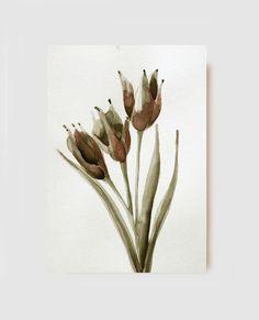 Blumen  Tulpen  originale Zeichnungen  Tinte von SimpleArtStudio