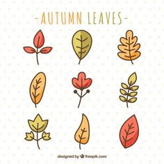 collection of hand drawn autumn leaves Mini Drawings, Small Drawings, Doodle Drawings, Easy Drawings, Fall Leaves Drawing, Leaf Drawing, Floral Drawing, Bullet Journal Writing, Bullet Journal Ideas Pages
