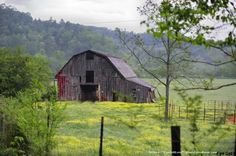 old barns on pinterest | Old Barns and Sheds & Cabins / Once Red