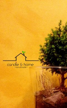 By Candle and Home...  instagram.com/candleandhome   #urbangarden #urbangardening #plant #plants #terrarium #teraryum #handmade #diy #home #homedecoration #deco #art #design #decoration #indoorgardening #turkey #türkiye #earth #moss #microecosystem #ecosystem #interior #love #candleandhome