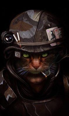 Cat Phone Wallpaper, Animal Wallpaper, Cat Superhero, Animals And Pets, Cute Animals, Creepy Cat, Squirrel Girl, Pet Costumes, Cat Drawing