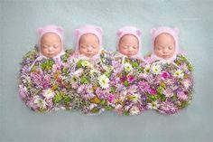 The faces of quadruplets