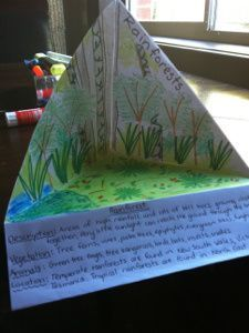 Students have the opportunity to be creative and learn about biomes. It's a great idea for them to have the definition and then give an example of where the biome is located in the state or U.S. or even across the world-KM