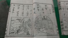 合宿先の松本市にて発見した書物。イヌに対する扱いが酷過ぎるのではないかと一部メンバーで話題になった。