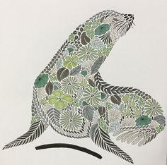 Colouring Millie Marotta Sea lion / Otarie Phoque