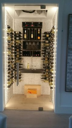 Frameless Glass Wine Cellar Door Room Naples, Fl