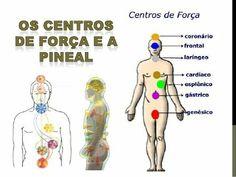 Os centros de força e a pineal