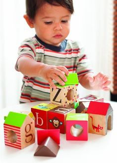 Amazon.com: Skip Hop Alphabet Zoo ABC House Blocks (Discontinued by Manufacturer): $38
