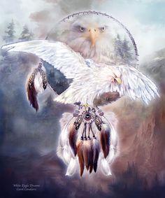 Dream Catcher - White Spirit Eagle by Carol  Cavalaris