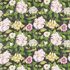 Floreanna Black Fabric from Sanderson Voyage of Discovery Collection. A cotton curtain fabric with a large colourful floral print on black. Cotton Curtains, Floral Curtains, Curtain Fabric, French Wallpaper, Fabric Wallpaper, Textile Prints, Floral Prints, Harlequin Fabrics, Sanderson Fabric